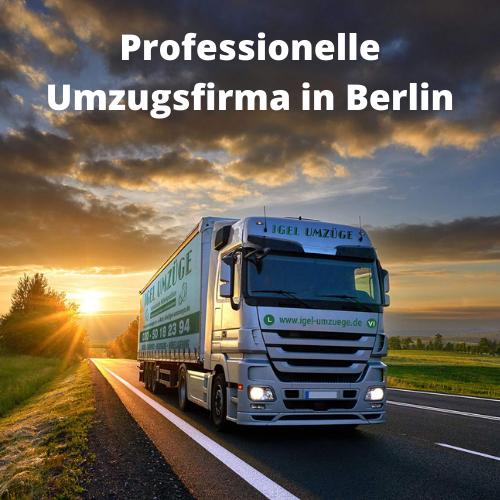 Umzugsunternehmen in Berlin: Erfahrene und kompetente Umzugshelfer von IGEL Umzüge